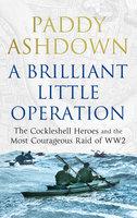 A Brilliant Little Operation - Paddy Ashdown