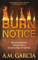 Burn Notice - A.M. Garcia
