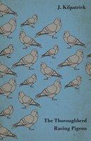 The Thoroughbred Racing Pigeon - J. Kilpatrick