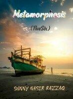 Metamorphosis - Nasir Razzaq