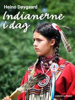 Indianerne i dag - Heino Døygaard