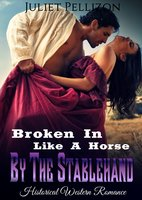 Broken In Like A Horse By The Stablehand - Juliet Pellizon