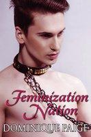 Feminization Nation: Female Domination Erotica - Dominique Paige