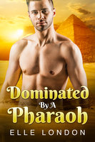 Dominated By A Pharaoh: Time Travel Egyptian Erotica - Daniella Fetish