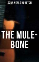 The Mule-Bone - Zora Neale Hurston