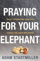 Praying for Your Elephant - Boldly Approaching Jesus with Radical and Audacious Prayer - Adam Stadtmiller
