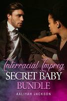 Interracial Impreg Secret Baby Bundle - Aaliyah Jackson