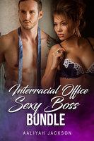 Interracial Office Sexy Boss Bundle - Aaliyah Jackson