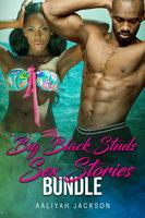 Big Black Studs Sex Stories Bundle - Aaliyah Jackson