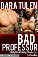Bad Professor - A Kinky Gay BDSM M/M Bondage College Short Story from Steam Books - Steam Books, Dara Tulen