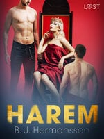 Harem - Erotic Short Story - B.J. Hermansson