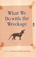 What We Do with the Wreckage: Stories - Kirsten Sundberg Lunstrum