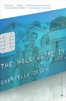 The Hole We're In: A Novel - Gabrielle Zevin