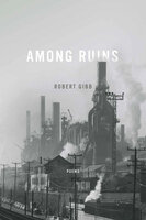Among Ruins - Robert Gibb