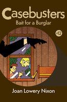 Bait for a Burglar - Joan Lowery Nixon