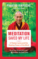 Meditation Saved My Life: A Tibetan Lama and the Healing Power of the Mind - Phakyab Rinpoche