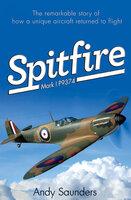 Spitfire: Mark I P9374 - Andy Saunders