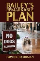 Bailey's Remarkable Plan - David R. Hardiman