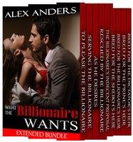 What the Billionaire Wants: Extended BDSM Bundle - Alex Anders