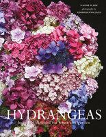 Hydrangeas - Naomi Slade