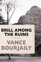 Brill Among the Ruins - A Novel - Vance Bourjaily