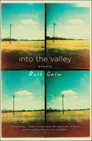Into the Valley: A Novel - Ruth Galm