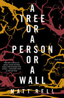 A Tree or a Person or a Wall: Stories - Matt Bell
