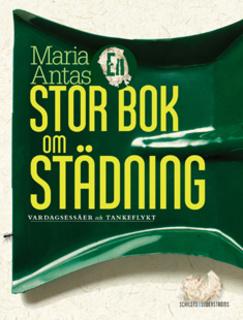 En stor bok om städning - Maria Antas