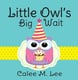 Little Owl's Big Wait - Calee M. Lee