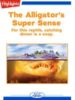 The Alligator's Super Sense - Ana Maria Rodriguez