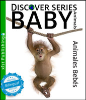 Baby Animals / Animales Bebés - Xist Publishing