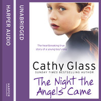 The Night the Angels Came - Cathy Glass