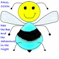 Pete the Bee and the Adventure in the Night - Paul Cook
