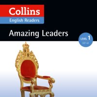 Amazing Leaders - Various Authors