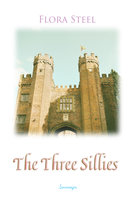 The Three Sillies - Flora Steel