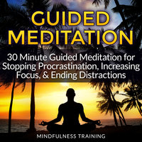 Guided Meditation - 30 Minute Guided Meditation for Stopping Procrastination, Increasing Focus, & Ending Distractions - Various Authors