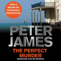 The Perfect Murder - Peter James