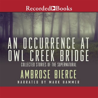 experiences of illusions in an occurrence at owl creek bridge a short story by ambrose bierce