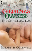 The Christmas Box - Elizabeth Coldwell