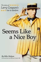 Seems Like a Nice Boy - Mike Malyon