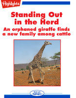 Standing Out in the Herd - Cecil Dzwowa