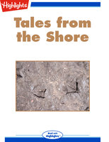 Tales from the Shore - Lori Johnson